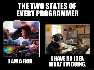 Los estados del programador